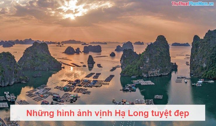 Những hình ảnh vịnh Hạ Long tuyệt đẹp