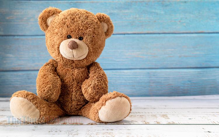 Những hình ảnh gấu bông đẹp nhất
