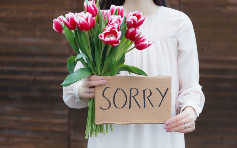 Hình ảnh về lời xin lỗi chân thành