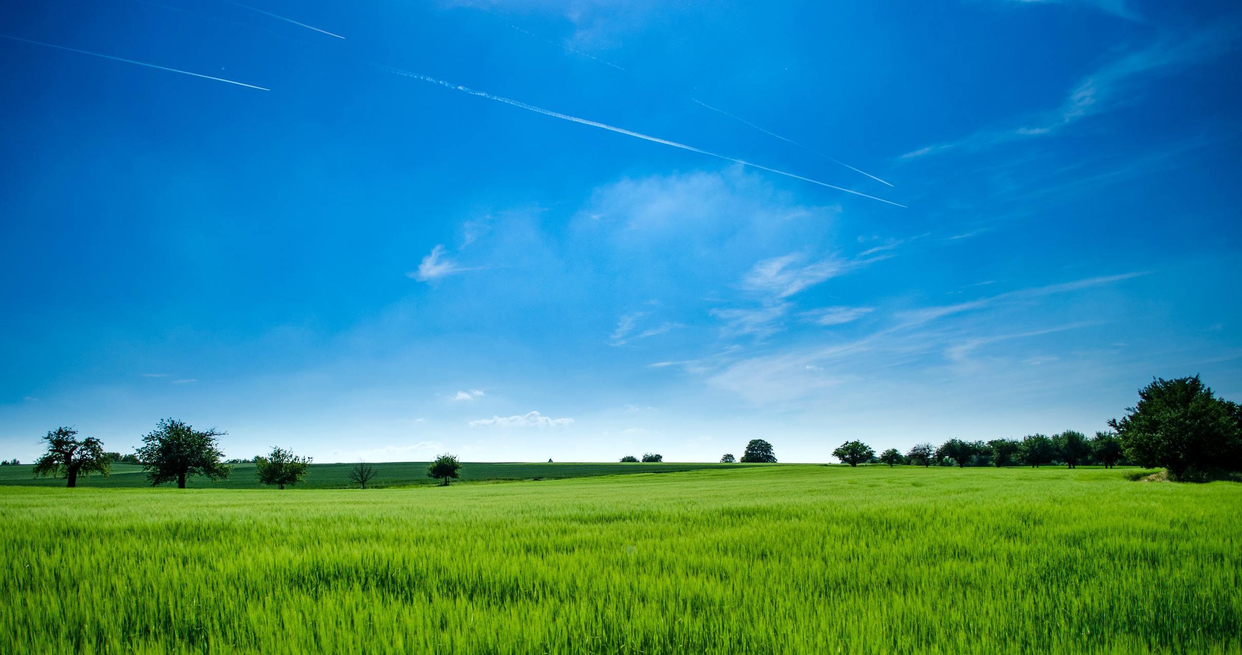 Ảnh bầu trời xanh và cánh đồng