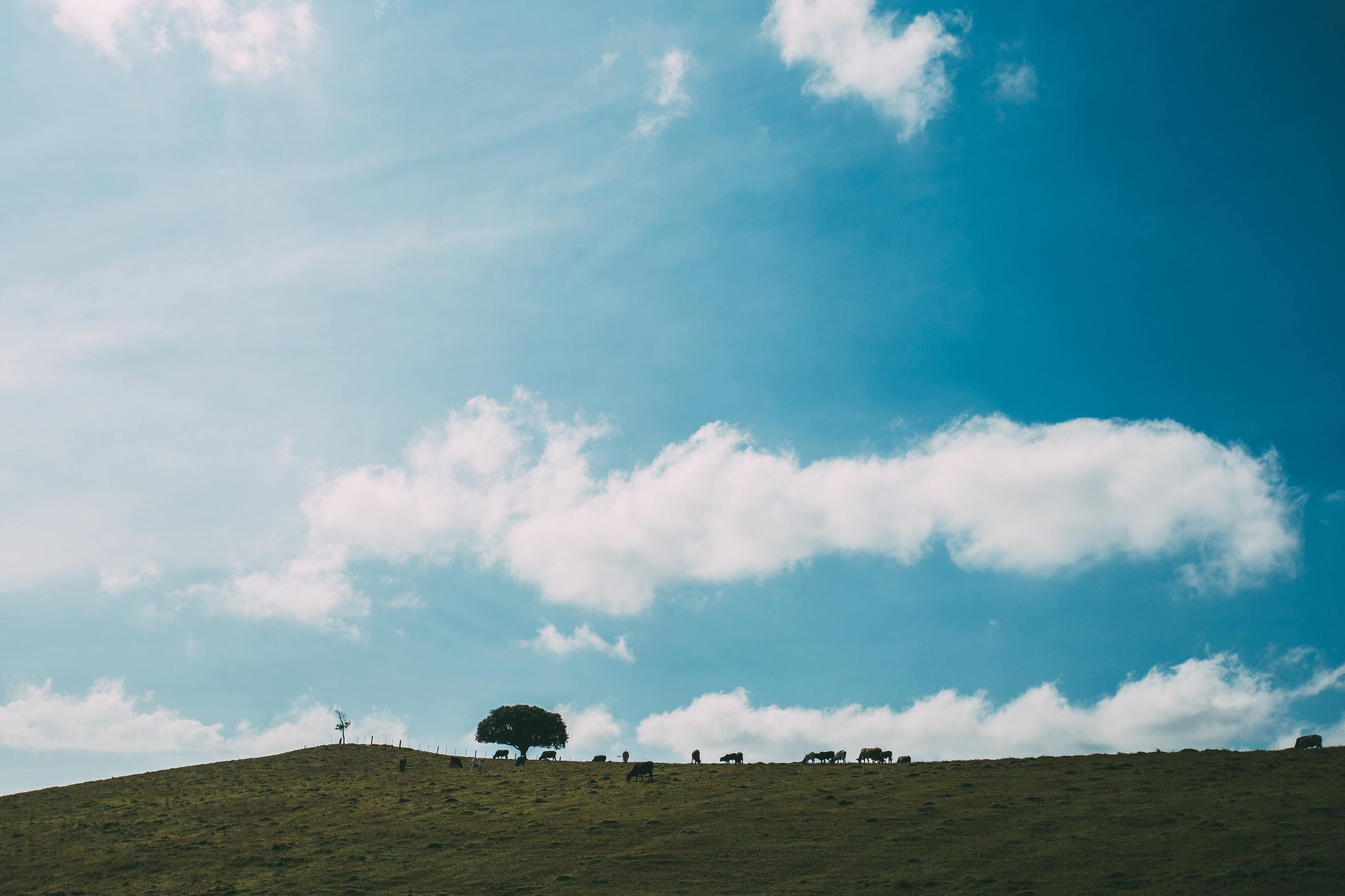 Hình ảnh bầu trời xanh cực đẹp