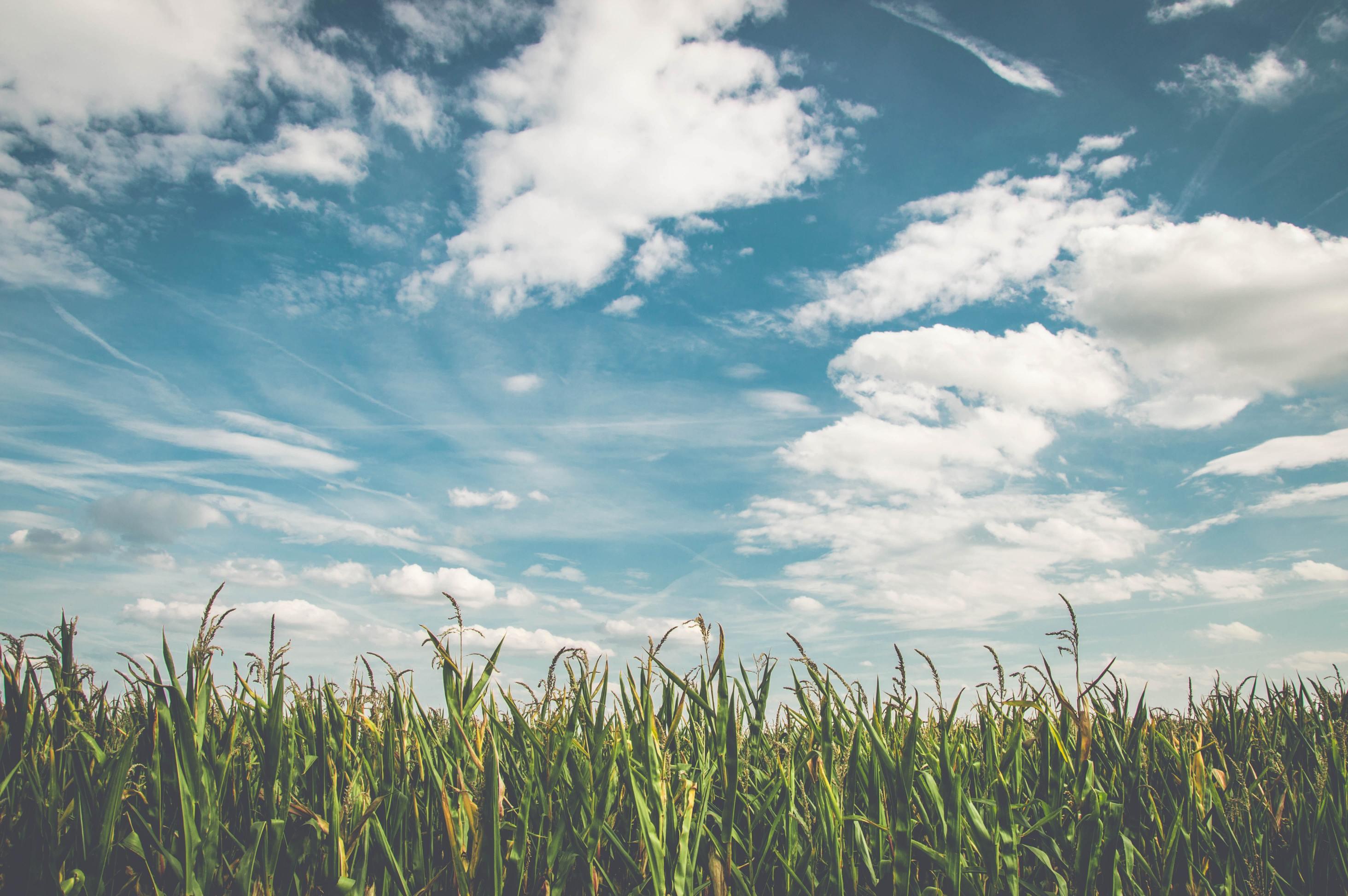 Hình ảnh bầu trời xanh ngát