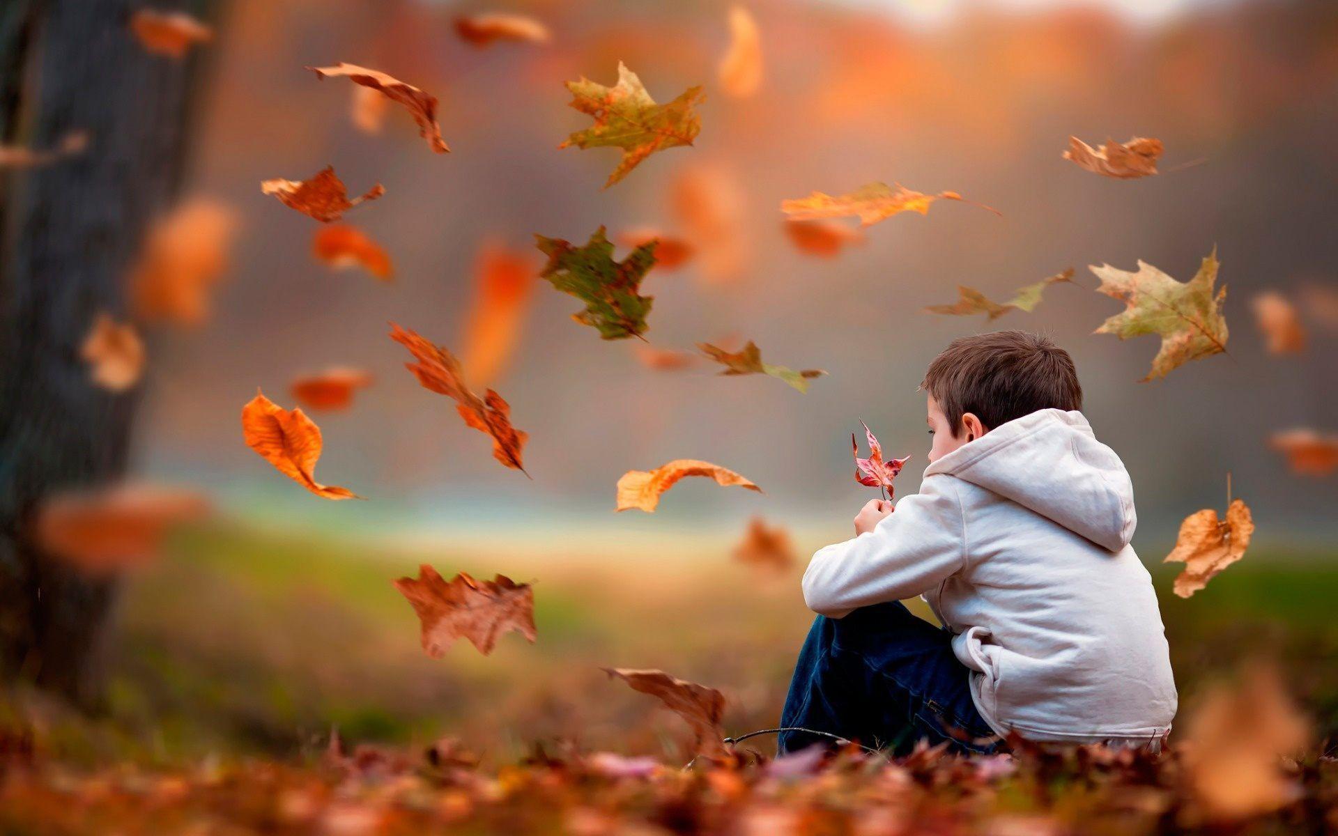 Hình nền buồn bã ngồi đếm lá vàng rơi như cậu nhóc