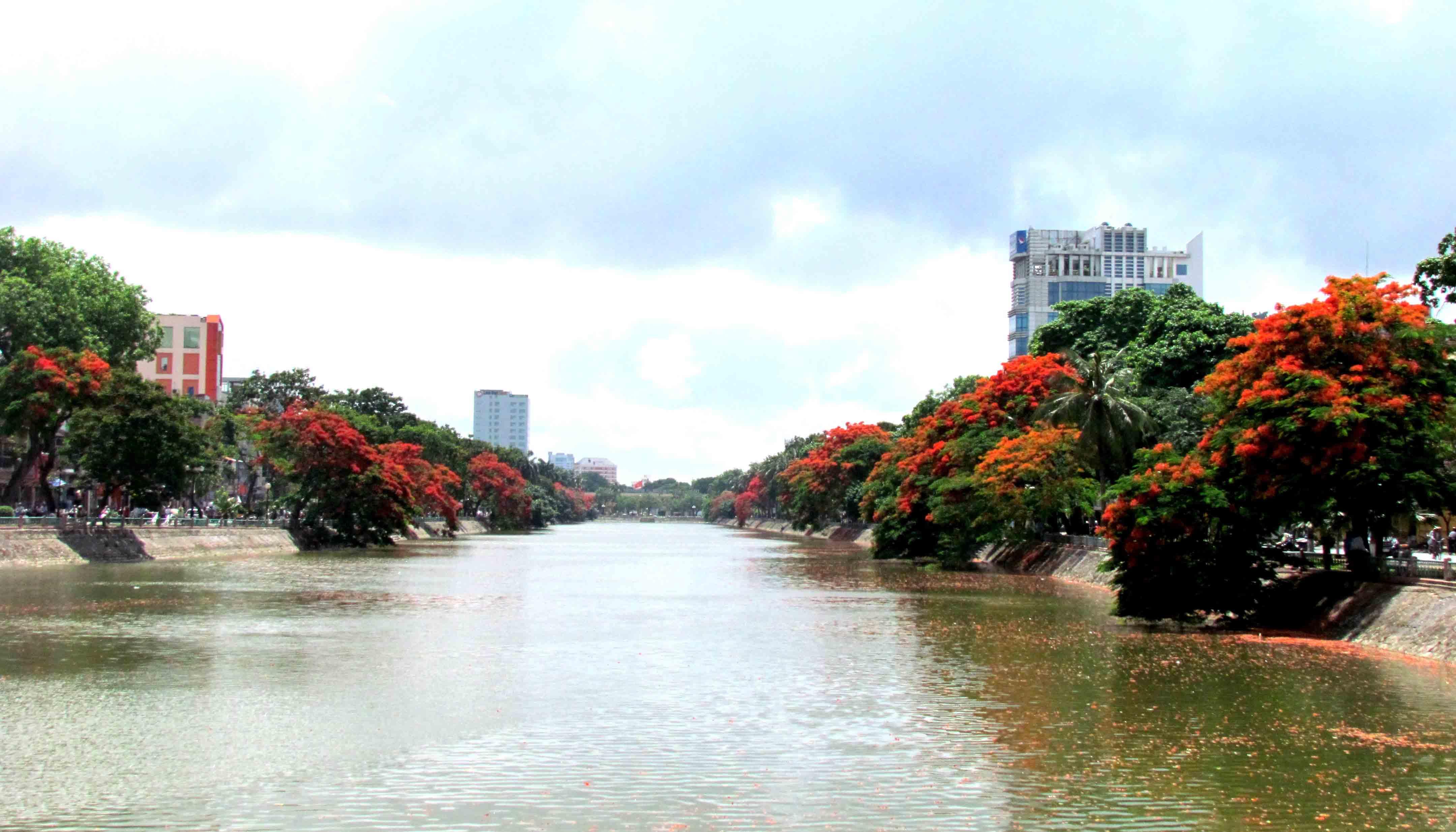 Đường hồ nở rộ hoa phượng đỏ
