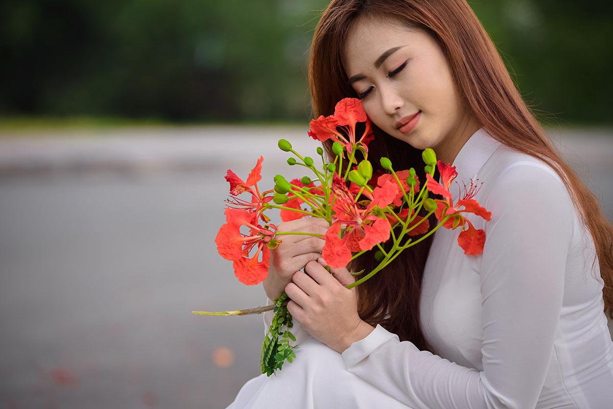 Hình ảnh bông hoa phượng phủ bên má