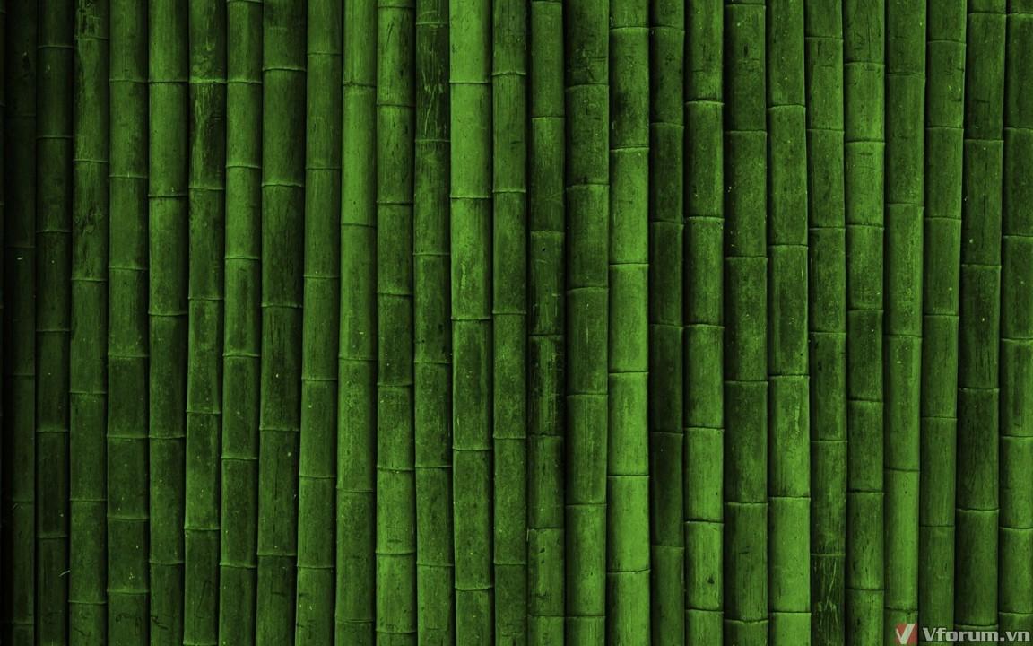 Hình ảnh bức tường tre