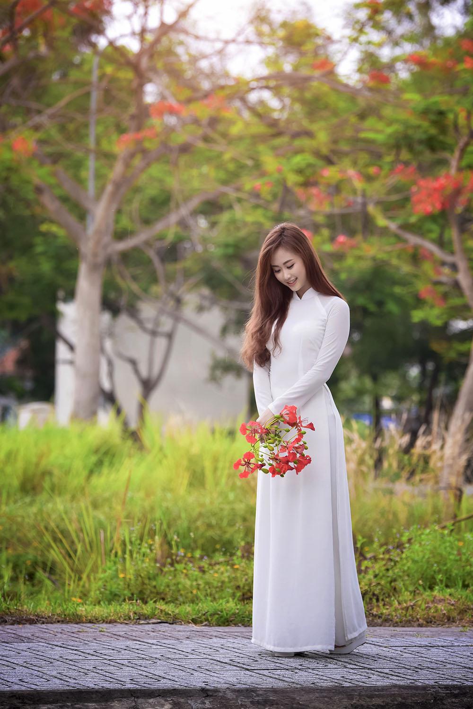 Hình ảnh hè về phượng nở áo dài trắng đpẹ