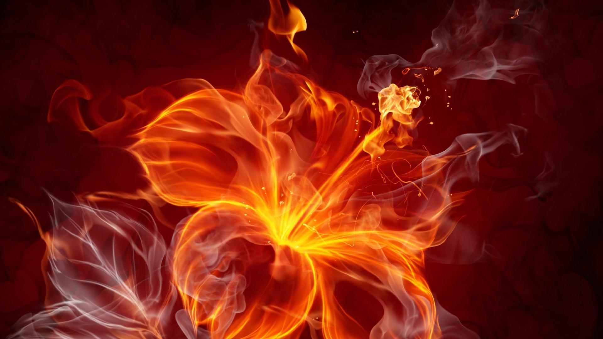 Hình ảnh ngọn lửa bông hoa