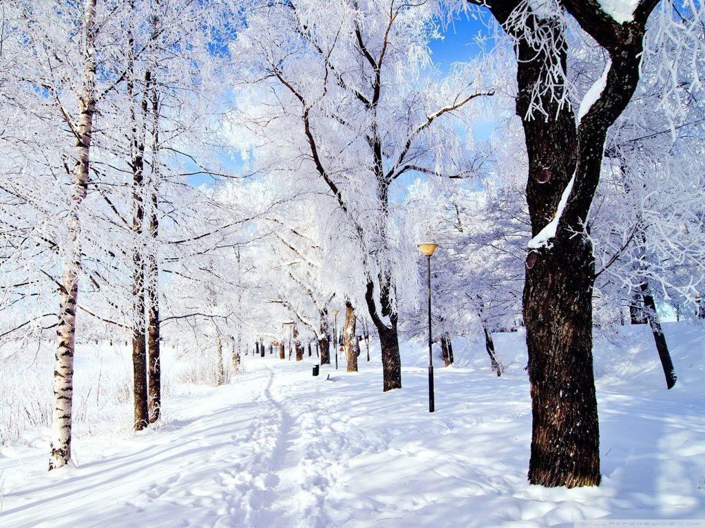 Hình ảnh tuyết rơi cực đẹp