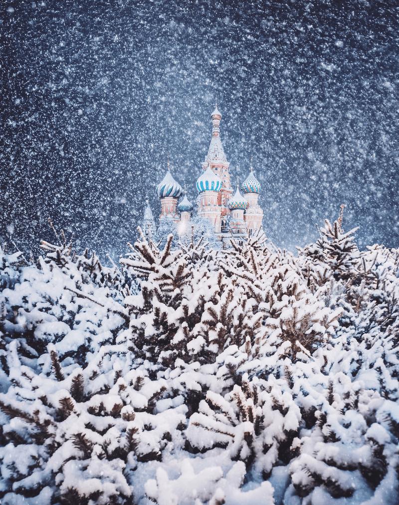 Hình ảnh tuyết rơi lâu đài và rừng