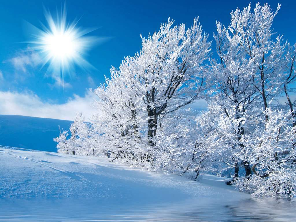Hình ảnh tuyết rơi mênh mông