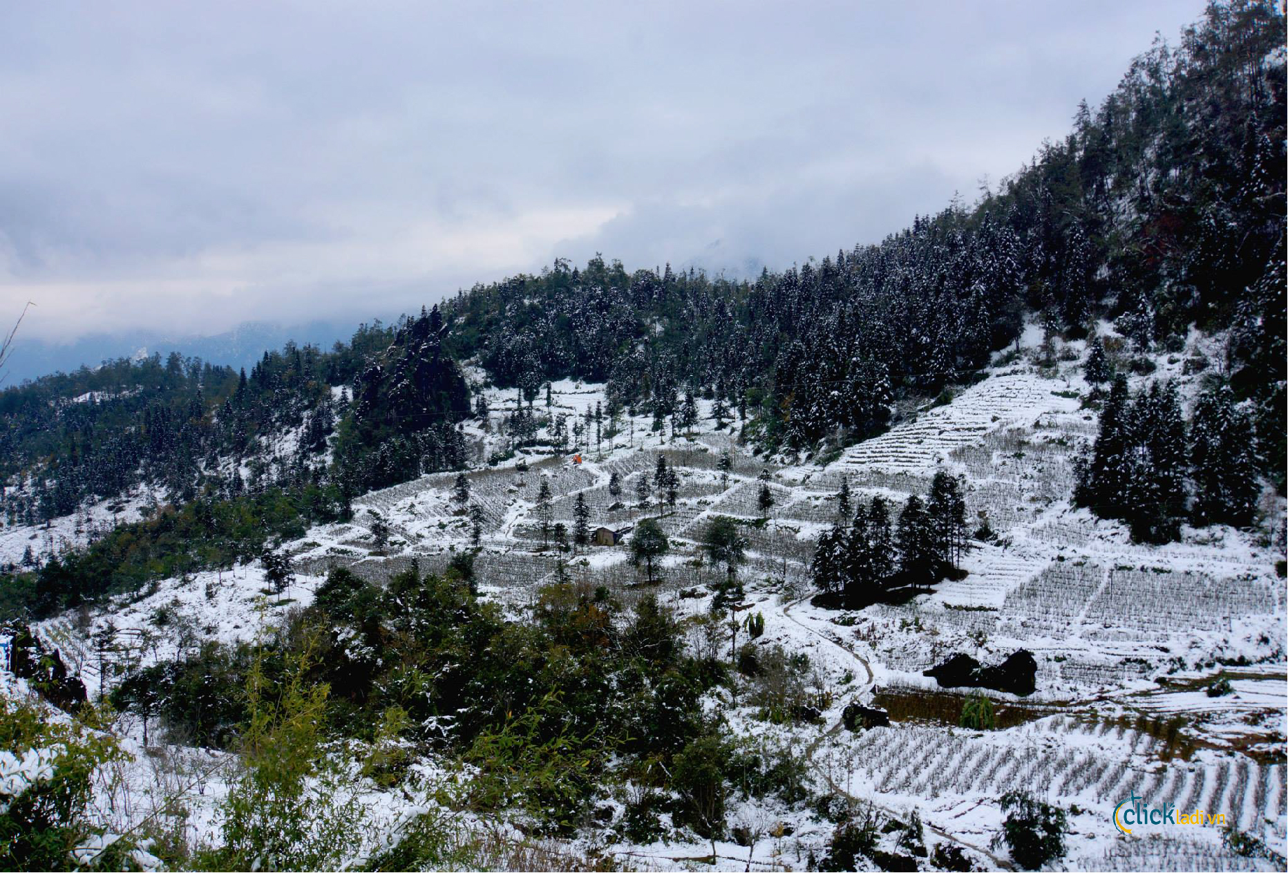 Hình ảnh vùng đất tuyết phủ cực đẹp