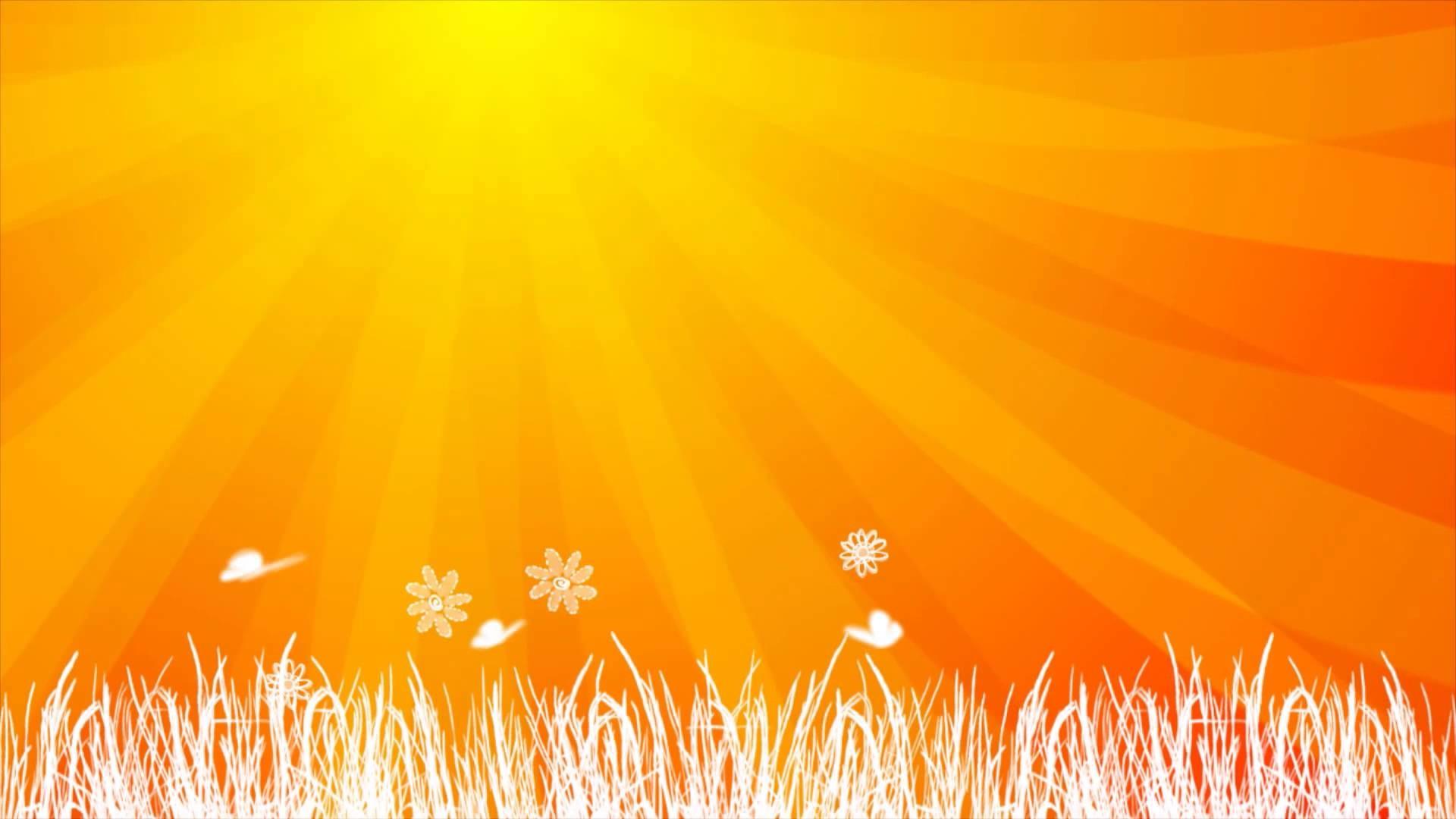 Hình nền vàng cam cỏ lá trắng tuyệt đẹp