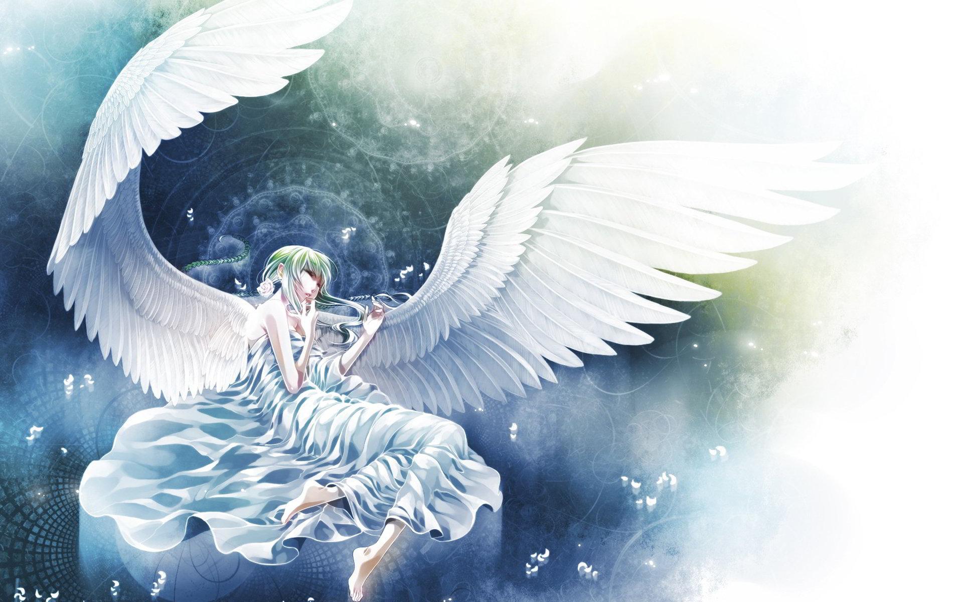 Thiên thần màu trắng