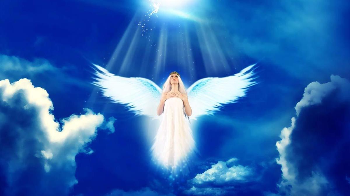 Thiên thần vươn cánh bay lên trời
