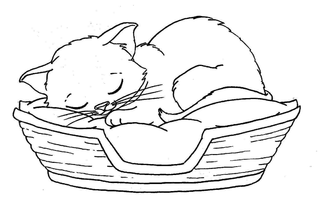 Tranh tô màu chú mèo đang nằm ngủ