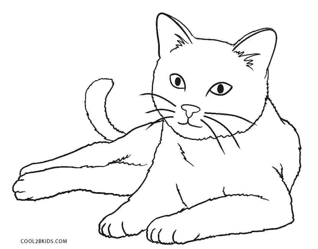Tranh tô màu chú mèo sang chảnh