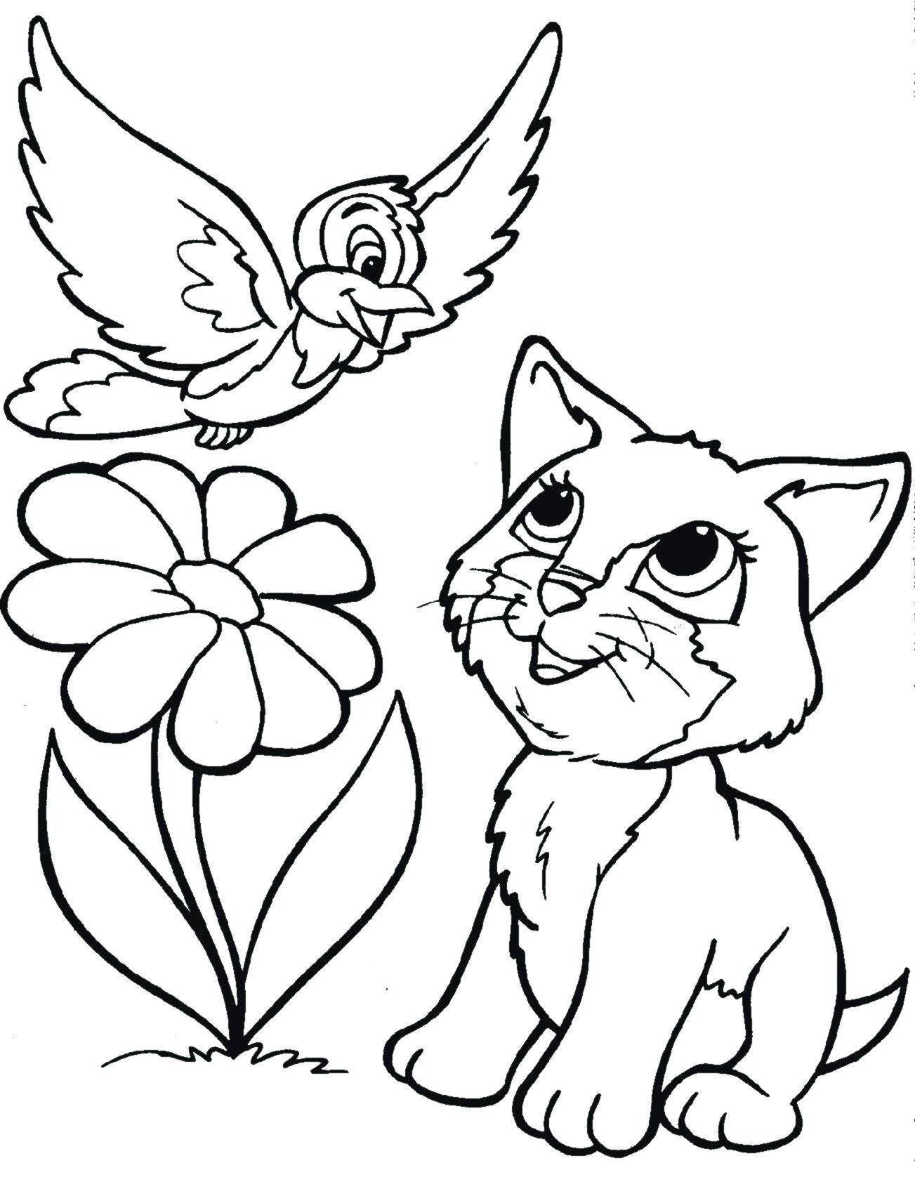 Tranh tô màu con mèo và con chim cực đẹp