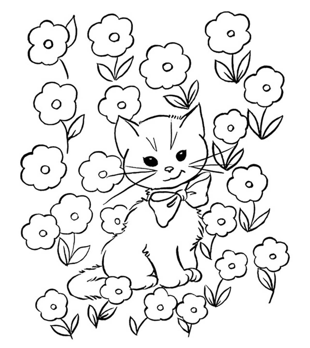 Tranh tô màu con mèo và những cành hoa nở rộ