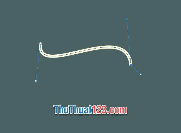 Bạn đã tạo được đường cong bằng cách Stroke đường vector