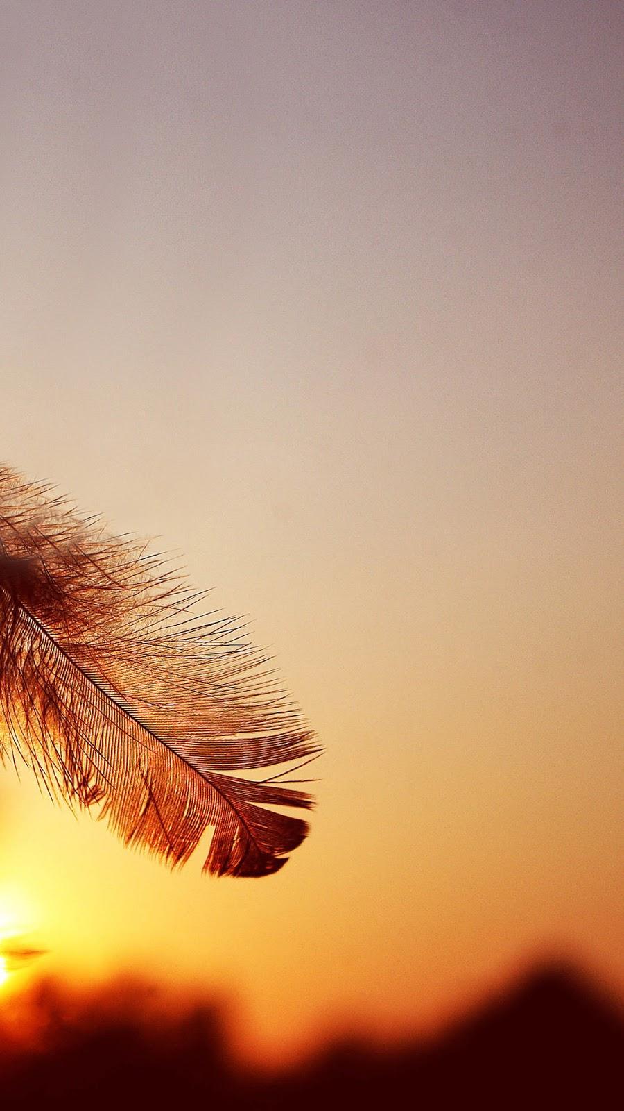 Hình nền Samsung lông vũ giáng chiều