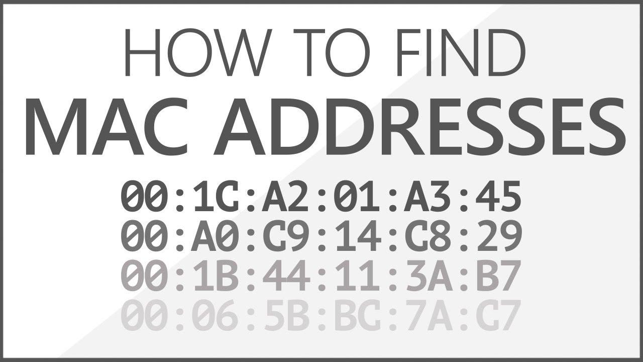 Cách xem địa chỉ MAC trên máy tính Windows 10