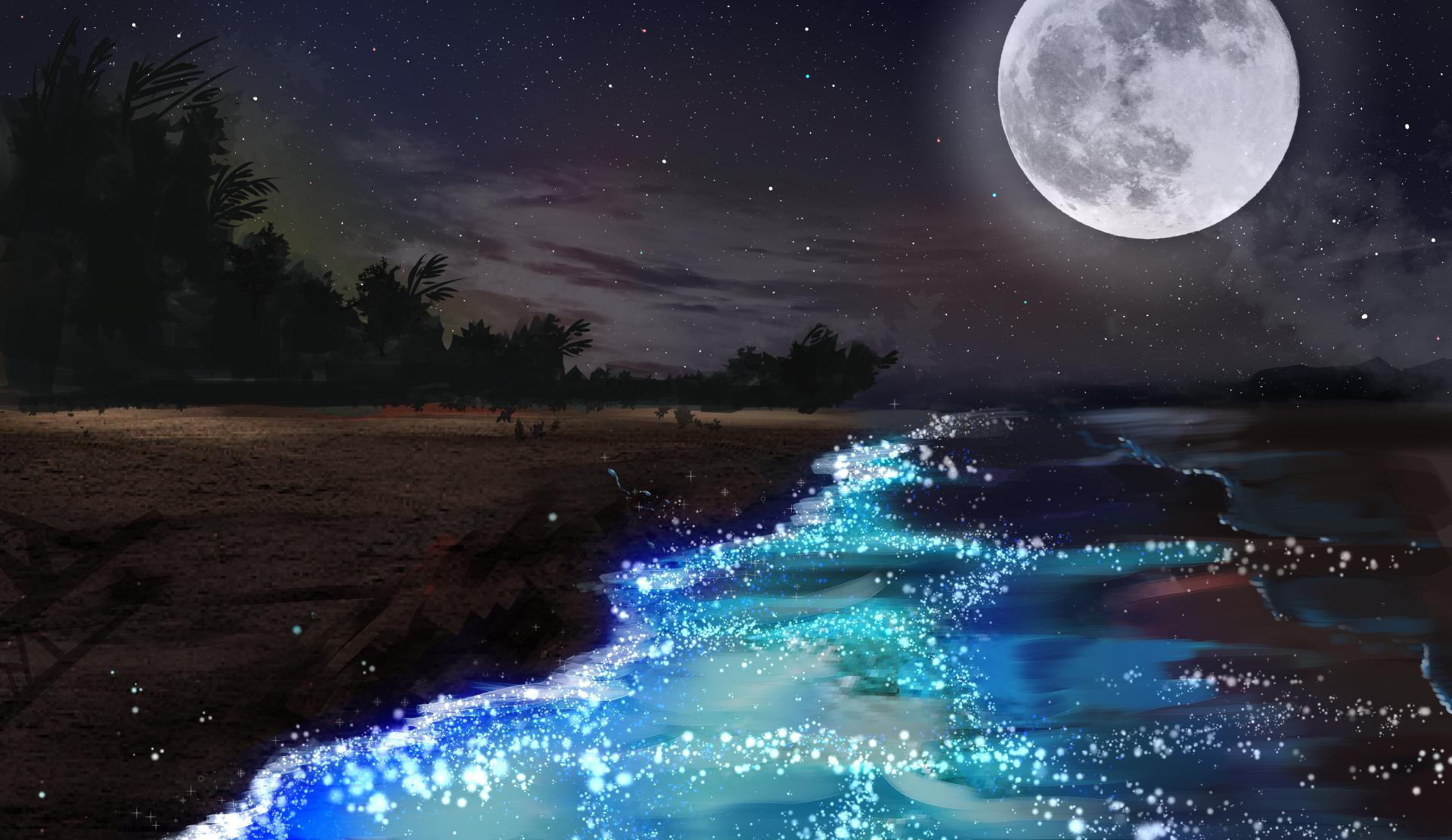 Ảnh mặt trăng ngoài bờ biển đẹp nhất