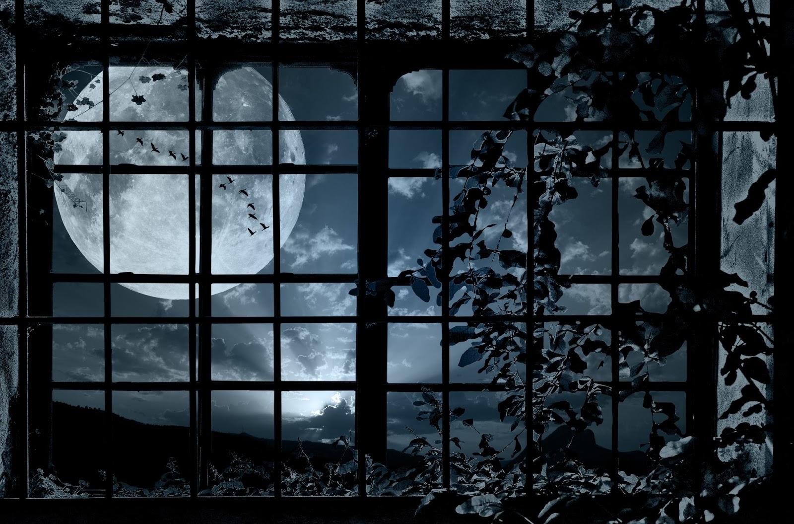Ảnh mặt trăng qua khung cửa sổ đẹp