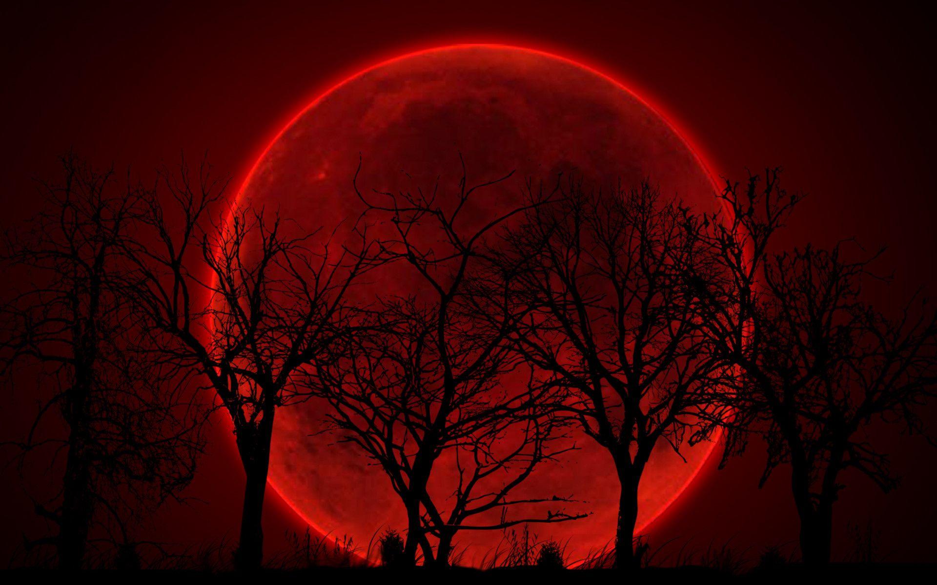 Hình ảnh trăng máu đẹp nhất